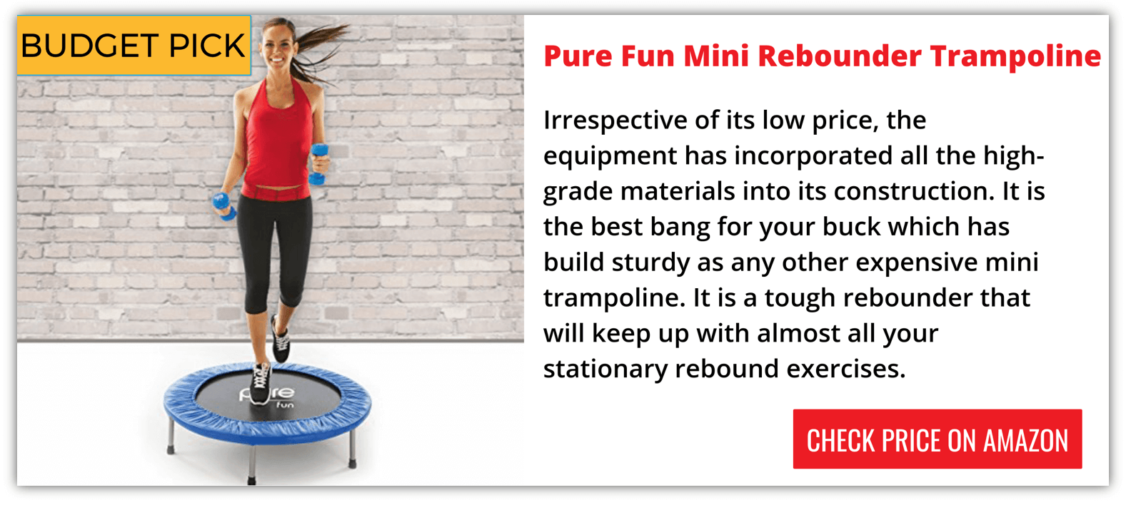 Top Rated Mini Trampoline